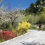 Alpes de Haute-Provence VTT St Jacques Compostelle 12