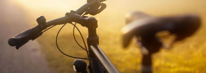 bike-langue-2